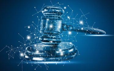Automating Data Rights Understanding